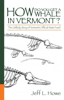 How Do You Get a Whale in Vermont? The Unlikely Story of Vermont's State Fossil